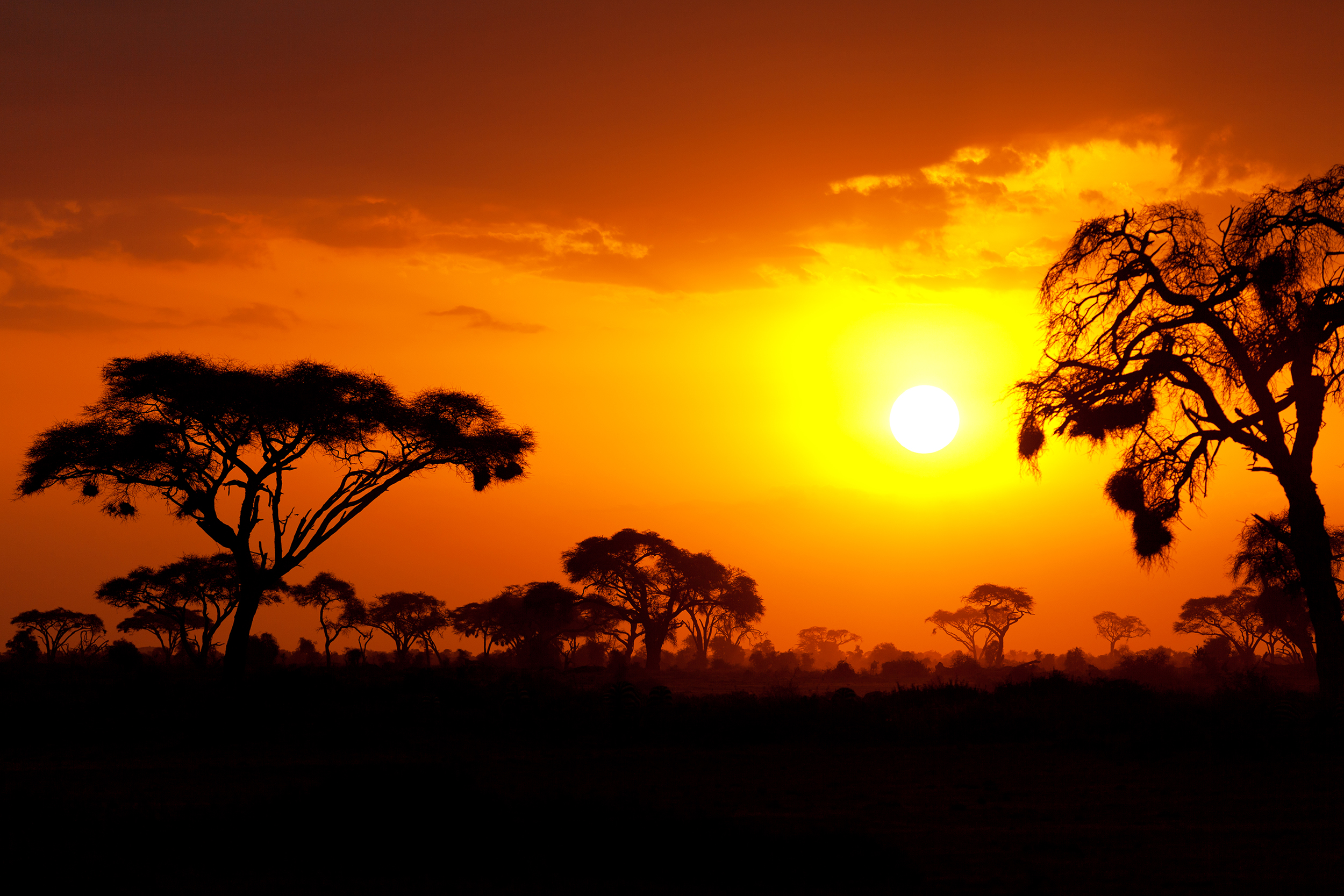 Typical african sunset