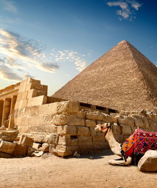 Egypt2020 1